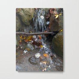 The Fall Metal Print