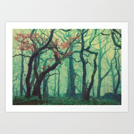 Tall Tree Tales Art Print