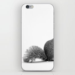 nuts iPhone Skin