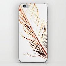 Peacock Feather 1 iPhone & iPod Skin