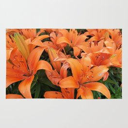 Orange Lillies Rug