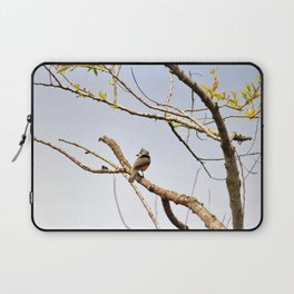 Perched Tufted Titmouse Laptop Sleeve