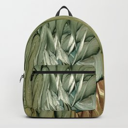 Hippogriffs Backpack
