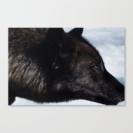 Wolves I Canvas Print