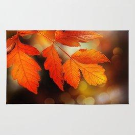 Perfect Autumn Rug