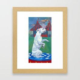 White Boxer Dog and a Balancing Ball Framed Art Print