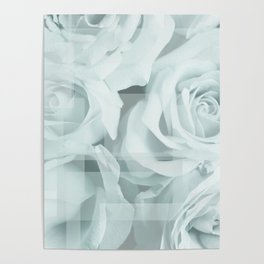 Roses collage Poster