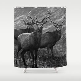 The four stags on the loch b/w Shower Curtain