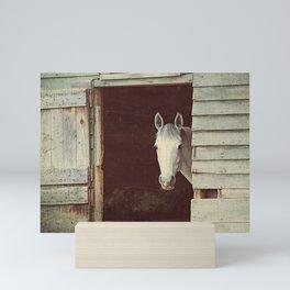 Peekaboo Mare // Horse Mini Art Print