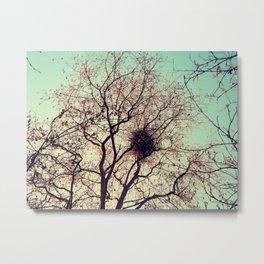 The hidden birds nest  Metal Print