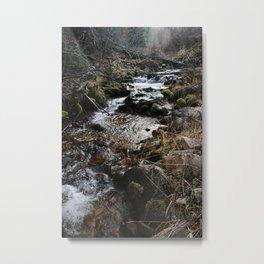 Wilderness Stream Metal Print
