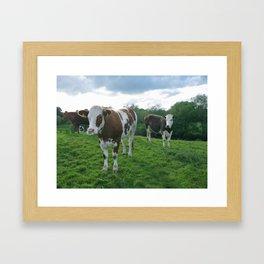 Intolerant Lactose Framed Art Print