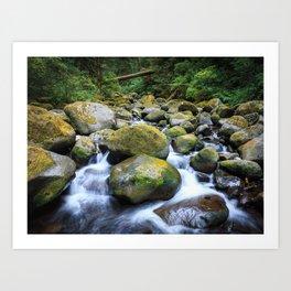 Oneonta Creek Cascades Art Print