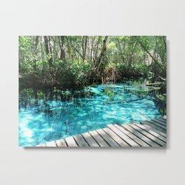 Celestun, Yucatan, Mexico Metal Print