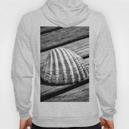 Half a sea shell on wood Hoody