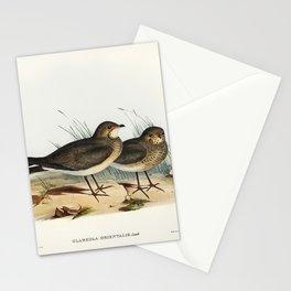 Oriental Pratincole (Glareola Orientalis) illustrated by Elizabeth Gould (1804–1841) for John Gould' Stationery Cards