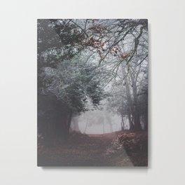 Dark fog forest Metal Print