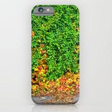 Autumm iPhone 6s Slim Case