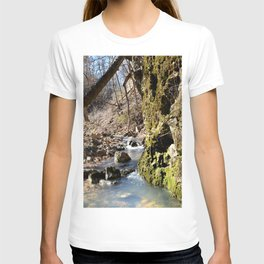 Alone in Secret Hollow with the Caves, Cascades, and Critters, No. 6 of 21 T-shirt