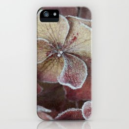 Frosty Hydrangea iPhone Case
