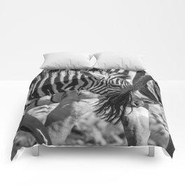 B&W Zebra 2 Comforters