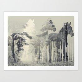 Like a Horse in the woods Art Print