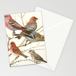 Vintage Print - Birds of America (1923) - Pine Grosbeak; Purple Finch Stationery Cards