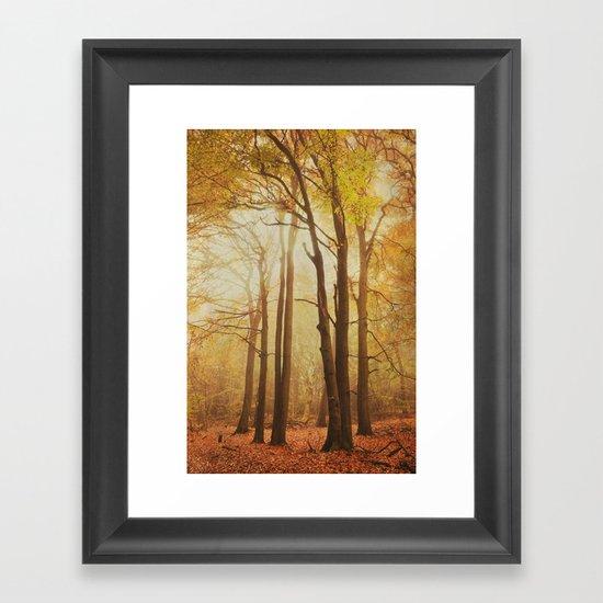 through the woods 1 Framed Art Print