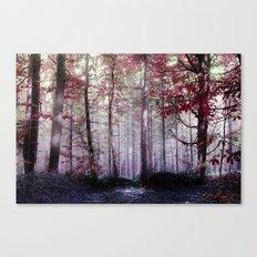 The wonder Canvas Print