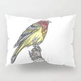 Sir Tanager Pillow Sham