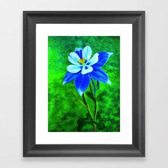 Blue columbine Framed Art Print