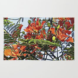 Royal Poinciana Tree Full Bloom Rug