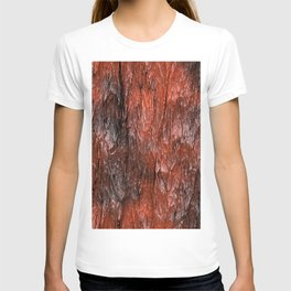 Grannys Hut - Structure 3C T-shirt
