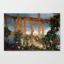 Rickety Fence And Beyond Canvas Print