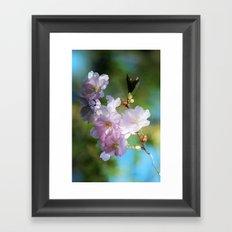 Pretty Pink Blossoms Framed Art Print