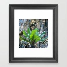 BANANA LEAVES ON MARBLE BACKGROUND Framed Art Print