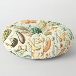 Autumn Harvest // Fruits by Adolphe Millot XL 19th Century Pumpkins Science Textbook Artwork Floor Pillow