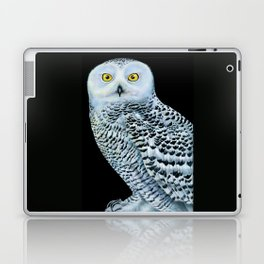 Snowy Owl Laptop & iPad Skin
