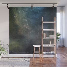 Zodiac Signs & The Night Sky Wall Mural