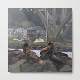 Oregon Coast Widlife Metal Print