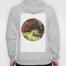 autumn deer. Hoody