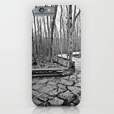Rest Stop iPhone 6s Slim Case