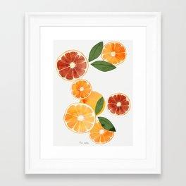 sliced oranges and spring watercolor Framed Art Print