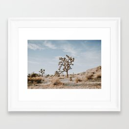 Joshua Tree II / California Desert Framed Art Print