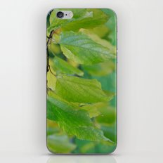 Natures Way iPhone & iPod Skin