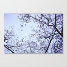 Neige Canvas Print