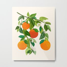 Oranges and Blossoms II / Tropical Fruit Illustration Metal Print