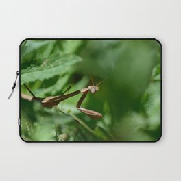Blank Mantis Stare Laptop Sleeve