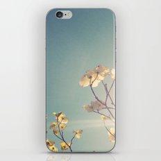 White Light iPhone Skin