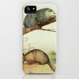 Opossum and Armadillo iPhone Case